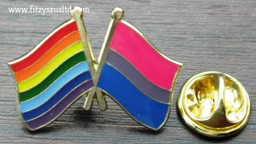 Rainbow & Bisexual Flag Friendship Pin Badge Pride LGBT Brooch Gay Diversity